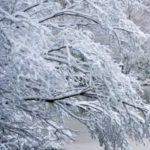 Аллергия на холод: симптомы